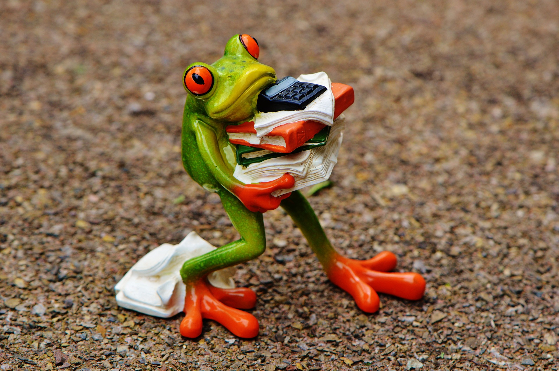 Stressed Frog Cover